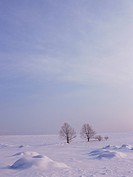 Snow_covered field in Hokkaido, Japan
