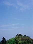 Mt. Takao, Tokyo Prefecture, Japan