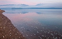 USA, Washington, Seabeck, Hood Canal, The Brothers, Olympic Mountains, view on sunrise