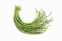 Bundle of fresh Chinese long beans on white background
