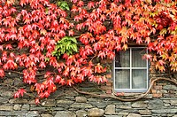 Autumn arrive in the English Lake District