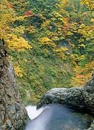 Anmon Waterfall, Shirakami Sanchi, Nishimeya, Nakatsugaru, Aomori, Japan