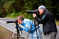 USA, WASHINGTON STATE, OLYMPIC PENINSULA, OLYMPIC NATIONAL PARK, HOH RIVER RAIN FOREST, PHOTOGRAPHERS