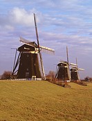 Windmills near Leiden, Netherlands