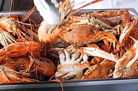 Various crustaceans
