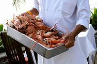 Chef carrying container of assorted crustaceans