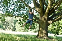 A young man swinging from the branch of a tree