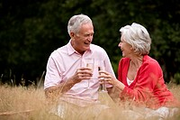 A senior couple sitting on the grass, drinking champagne