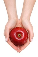 Woman´s hands holding a red apple in white background