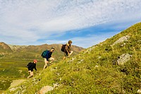 Family hiking up a ridge into the Alaska Range above Thorofare River, Denali National Park, Interior Alaska, Summer/n