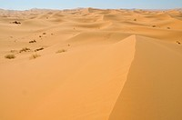 Africa, Morocco, Maghreb, North Africa, sand dunes, erg Chebbi, desert, dunes, Sahara, sand, nature, scenery