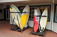 Surfboard Rental Kailua Kona Hawaii Pacific Ocean