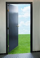 Door opening onto green lawn (thumbnail)