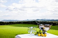 Chilled champagne and lemons on table by lawn