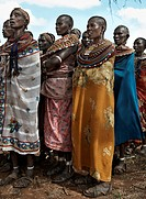 Group of Tribal Women in Colorful Traditional Costumes, Kenya