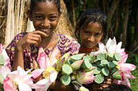 Children collecting water_lily flowers in a village in Pabna Rajshahi, Bangladesh September, 2007