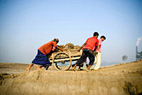 Laborers carry soil on a push cart to the brick field in Katiadi, Kishorganj, Bangladesh There are 6000_7000 brickfields in Bangladesh, usually situat...