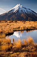 Mt Egmont / Taranaki, dawn reflection in small tarn set among tussock slopes of Pouakai range, Taranaki.