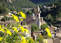 Valldemossa's church and yellow flowers, Majorca, Spain