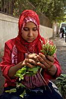 Asma, 12 years old, sells vegetables in west Helwan neighbourhood in suburban Cairo Although she sits just outside the Red Crescent building, she does...