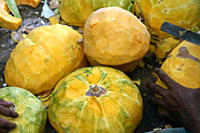 Pumpkins are being prepared for a feast, locally known as 'Mezban', in Chittagong, Bangladesh May 18, 2010 Mezban Persian word meaning 'host' stands f...