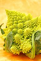 Broccoli ´romanesco´