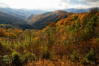 Autumn, Great Smoky Mountains NP, TN-NC