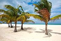 Isla Pasion Passion Island off Isla de Cozumel, Cozumel, Mexico, North America