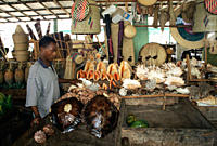 Illegal trading of turtle shells in fish market Dar es Salaam, Tanzania