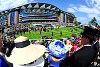 England, Berkshire, Ascot. Horses parading in the parade ring before smartly dressed spectators during day one of Royal Ascot 2010.