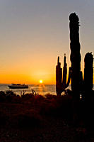 Sunrise from Isla San Esteban in the midriff region of the Gulf of California Sea of Cortez, Baja California Norte, Mexico rr