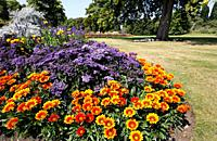 Colourful flowerbeds in Hyde Park, London, UK