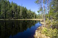 Hiidenportti National park, Sotkamo Finland