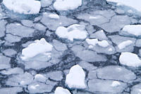 Blizzard conditions cause the ocean´s surface to begin to freeze in Dahlmann Bay, Antarctica, Southern Ocean MORE INFO First signs of grease ice as th...