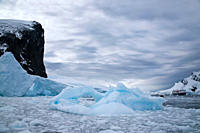 Spigot Point in Orne Harbour on the Antarctic Peninsula, Antarctica, Southern Ocean MORE INFO Orne Harbor was discovered by the Belgian Antarctic Expe...