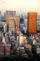 City view from Tokyo Tower, Tokyo, Japan.