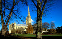 Autumnal view of Salisbury Cathedral