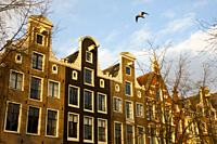 Dutch gables in Amsterdam, Holland, late afternoon sunshine