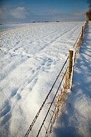 Snow with fence and empty field and sky
