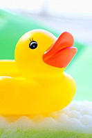Rubber duck floating on soapsud (thumbnail)