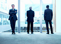 Businessmen standing near glass wall in office
