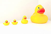 Large and small rubber ducks in a row