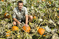 Man in pumpkin field