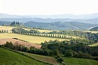 Landscape near Siena, Tuscany, Italy