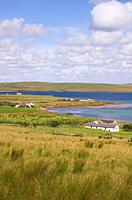 Bay of Quoys HOY ORKNEY Grassy fields spike rush sedge houses Burra Sound and Graemsay island