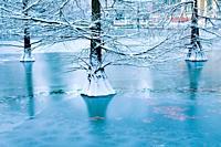 Frozen over pond, Cristal Palace. The Retiro park, Madrid, Spain.