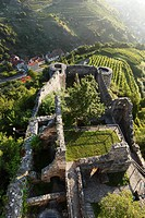 Ruins of Hinterhaus Castle, Spitz, Wachau, Waldviertel, Lower Austria, Austria, Europe
