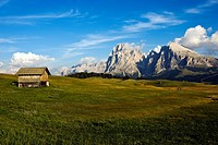 View over the Seiser Alm mountain pasture, towards the Sassolungo and Sassopiatto mountains, in the back the Sella group, Dolomites, South Tyrol, Ital...