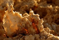 Salt crystals of the Atacama Desert, Chile, South America