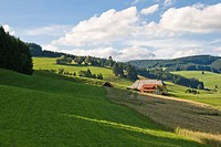 Black Forest farm in the Viertaelerland region at Titisee, Black Forest, Baden_Wuerttemberg, Germany, Europe